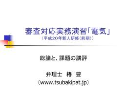 審査対応実務演習「電気」 (平成19年新人研修(前記))