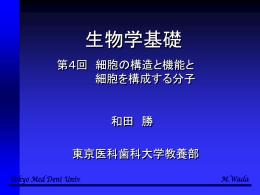 第4回講義の内容 - 東京医科歯科大学