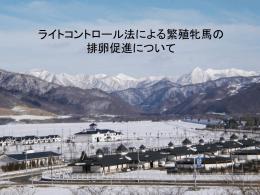 ライトコントロール - 競走馬総合研究所