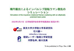 応物学会2002年秋発表資料(PowerPoint 980KB