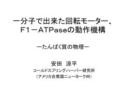 一分子で出来た回転モーター、F1-ATPaseの動作機構 ー