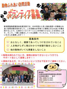ボランティア募集ポスター(PDF形式 570 キロバイト)