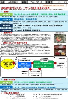 (2)道南産野菜を用いたゼリー・プリンの開発・製造及び販売(PPT:305KB)