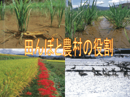 田んぼと農村の役割