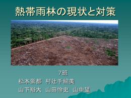 7班(熱帯雨林の現状と対策)