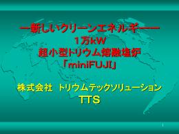 熔融塩炉 - トリウムテックソリューション
