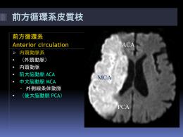 中大脳動脈