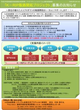 H24販路開拓プロジェクト募集要項 - 九州地域環境・リサイクル産業交流