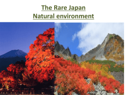 The Rare Japan
