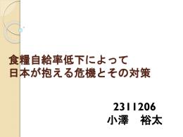 食料自給率低下によって 日本が抱える危機とその対策