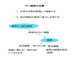 myc 遺伝子