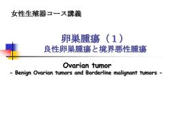 卵巣腫瘍(1) 良性卵巣腫瘍