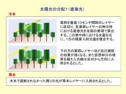 太陽光の分配,木本の成長,木本PFTにおける樹冠の枯れ上げ