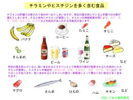 チラミンヒスチジンを多く含む食品
