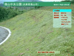 知多横断道路(愛知県常滑市) 吹付け:平成16年6月