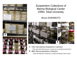 Zooplankton Collection of Marine Biological Center IORD, Tokai