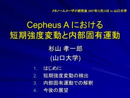 Cepheus A における短期強度変動と内部固有運動