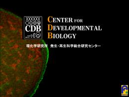再生メカニズムの解明 - 理化学研究所 多細胞システム形成研究センター
