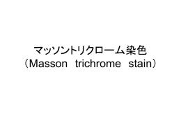 マッソントリクローム染色 (Masson trichrome stain)