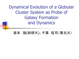 Dynamical Evolution of a Globular Cluster System as Probe of