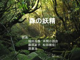 8班(森の妖精)
