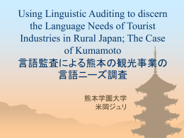 Using Linguistic Auditing to discern the Language Needs of Tourist