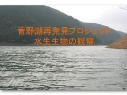 菅野湖生き物探検