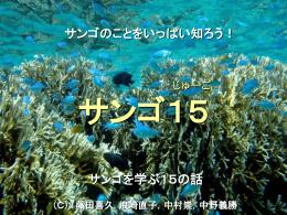 サンゴ15ファイル