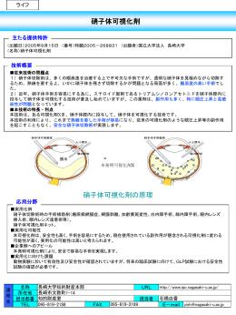 硝子体可視化剤