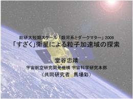 「すざく」衛星による粒子加速域の探索