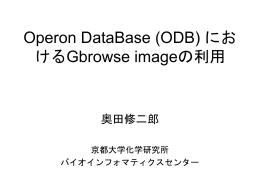 Operon DataBaseにおけるGBrowse imageの利用