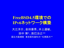FreeBSD4.5環境での IPv6ネットワーク構築