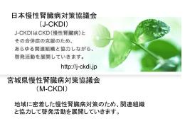 『新たな国民病「慢性腎臓病」』講演スライド(PPT:8558KB)
