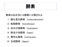 講義プレゼンppt (酵素)