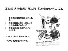 運動療法学総論 第5回 筋収縮のメカニズム