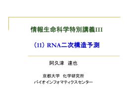 RNA二次構造予測