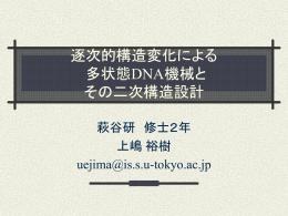 DNA分子の二次構造設計と 熱力学的解析