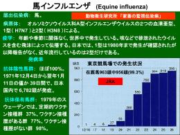馬インフルエンザ