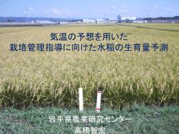 気温予想を用いた 水稲の生育量予測と栽培管理指導