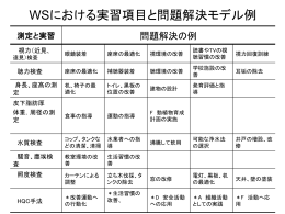 WSにおける実習項目と問題解決モデル例