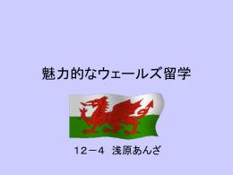 魅力的なウェールズ留学