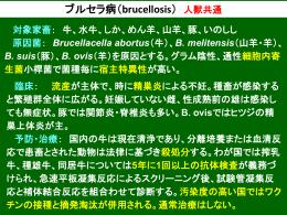 ブルセラ病・出血性敗血症