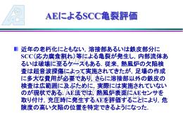 SCC亀裂評価