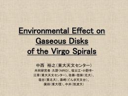 Virgo環境効果
