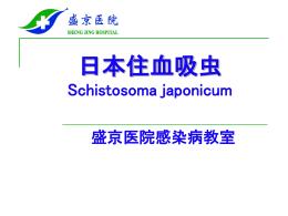 日本住血吸虫発見の歴史