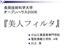 発表資料(PPTファイル)