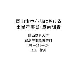 岡山市中心部における来街者実態・意向調査