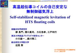 LHDヘリカルコイルの冷却および機械的安定性解析