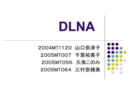 DLNA - NISE