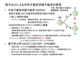 格子QCDによる中性子電気双極子能率の研究